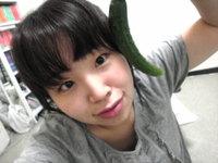 Seiakyuuri_2